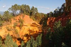 Лес парка Люберона региональный Стоковая Фотография