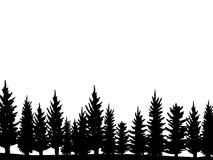 Лес силуэта елей рождества Coniferous елевая панорама Парк вечнозеленой древесины Вектор на белой предпосылке иллюстрация вектора
