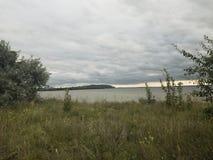 Лес-степь Стоковое Фото