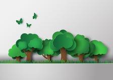Лес с деревьями и травой Стоковая Фотография RF