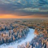 Лес с красивым заходом солнца зимы, взгляд сверху Стоковые Изображения
