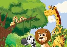Лес с страшными дикими животными Стоковое Изображение RF
