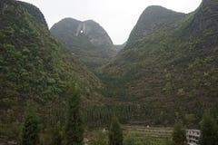 Лес 10 тысяч пиков Стоковое фото RF