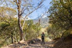 Лес backpacker женщины trekking, гора Эвереста видимая на ба Стоковое Изображение