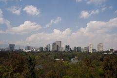 Лес Chapultepec стоковые фотографии rf