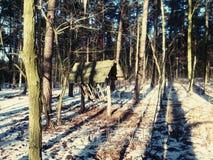 Лес Hayrack Стоковые Фотографии RF