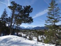 Лес Snowy Isartal Стоковое Изображение RF