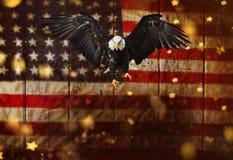 Летание белоголового орлана с американским флагом Стоковая Фотография RF