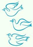 Летание голубя иллюстрация штока