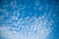 Летание змея в голубом облачном небе Стоковые Изображения