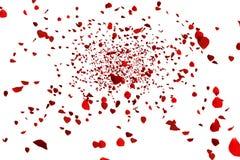 Летание красных красочных лепестков розовое на белые предпосылка, влюбленность и день валентинки иллюстрация штока