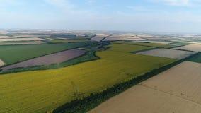 Летание над аграрными полями сток-видео
