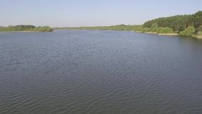 Летание над водой против фона леса видеоматериал
