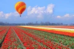Летание над сельскохозяйственными угодьями стоковое изображение