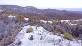 Летание над снежными холмами и фильмом трутня 4k леса воздушным сток-видео