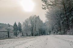 Летание над снежным ландшафтом стоковая фотография rf