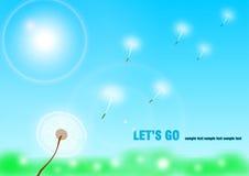 летание одуванчика Стоковое Изображение