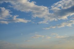 Летание орла в небе с облаками стоковые изображения rf