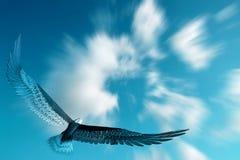 летание орла Стоковая Фотография