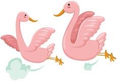 летание пар птиц Стоковые Фото