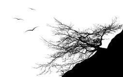 летание птицы вокруг ветви дерева, EPS10 Стоковое Изображение RF