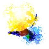 Летание птиц голубей Watercolour, красочная картина вектора Полет птиц иллюстрация вектора