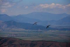 Летание планера вида в горах в Makedonia Стоковые Фото