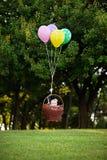 Летание ребёнка в корзине на воздушных шарах на предпосылке  стоковые изображения