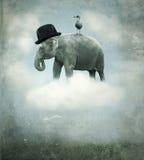 Летание слона фантазии Стоковые Изображения