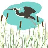 Летание цапли, иллюстрация вектора, плоский стиль бесплатная иллюстрация