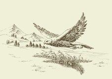 Летание ястреба в естественном ландшафте иллюстрация штока