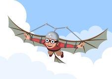 летание Стоковые Изображения RF