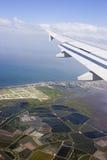 летание Стоковая Фотография RF