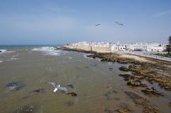 Летать к Essaouira Стоковая Фотография