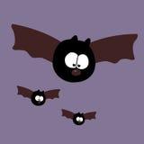 летать летучих мышей Стоковые Изображения