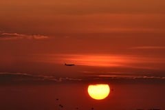 Летать на заход солнца Стоковое Фото