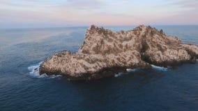 Летать над скалой в море Птицы на утесе в море Остров с птицами в океане сток-видео