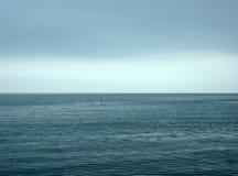 Летать над чайками моря Стоковое фото RF
