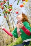 летать цветков стоковое фото