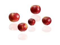 летать яблок стоковое фото