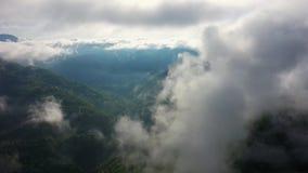 Летающ над изумительным дождевым лесом, вид с воздуха над дождевым лесом с туманом на восходе солнца r видеоматериал