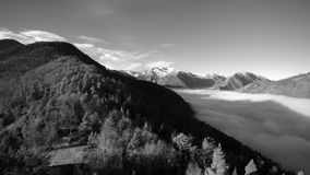 Летающ над лесом на pyrenean горе, рядом с морем облаков Снежный держатель Montcalm появляется на заднем плане Почерните акции видеоматериалы
