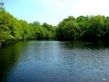 лета озера Стоковые Фотографии RF