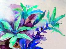 Лета природы предпосылки искусства акварели лилии цветения белого цветка красочного голубые садовничают Стоковые Изображения
