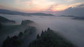 Летите над туманными облаками над лесом в восходе солнца утра акции видеоматериалы