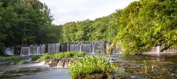Летний день вдоль маленького реки утки стоковое изображение rf