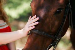 Летний день на ферме Лошадь ласки молодой женщины Стоковые Изображения
