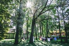 Летний день в Tartu, Эстонии стоковая фотография rf