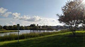 Летний день на парке стоковая фотография