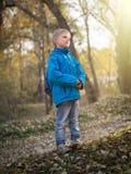 7 - летний мальчик освещен заходящим солнцем в парке осени стоковое изображение